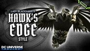 DCUO Hawk's Edge Style (Inspired by Lady Blackhawk) - Dark Multiverse Time Capsules