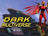 Dark Multiverse Time Capsule