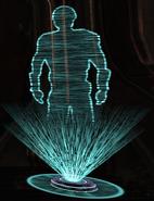 Holographic Decoy