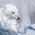 Wild King Wolf