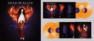 Ftf vinyl orange