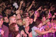 Sommarens sista suck 20090828 Dead by April 013 audience publik
