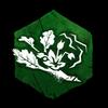 """""""Die hellgrünen Blätter sind mit einer eigenartigen purpurroten Ader unterlegt. Verbreitet ein starkes Retticharoma."""""""