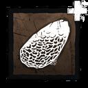 Coarse Stone