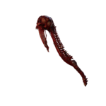 Wraith Weapon01 P01.png