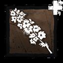 Pamiątkowy Kwiat