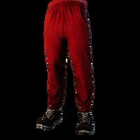 DK Legs003 02.png
