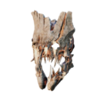 TR Mask006.png