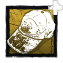 FulliconAddon muddySportsDayCap.png