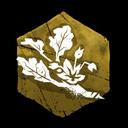 Fresh Crispleaf Amaranth