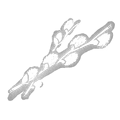 IconAddon pussyWillowCatkins.png
