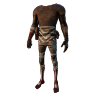 TW Body01 02.png