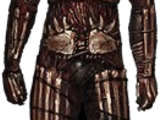Limited Edition Armour