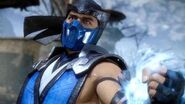 Sub Zero Battle Profile