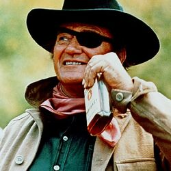 Rooster Cogburn (1969 Film)