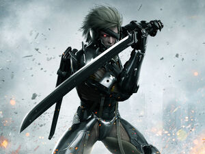 Raiden Metal Gear Rising.jpg