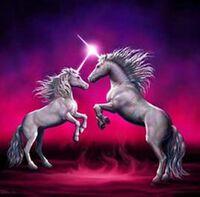 Unicorns fighting