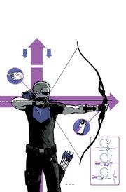 Hawkeye 2012 2.jpg