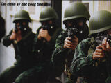 Vietnamese Special Forces