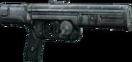 WESTAR-25 Full.PNG