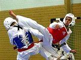 Hapkido-Taekwondo Hybrid