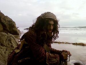 Pirate DW.jpg