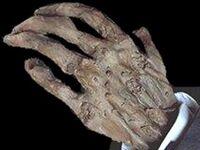Zombie Hands.jpg