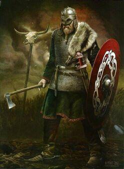 Vikings DW.jpg