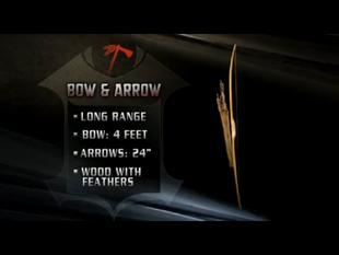 Bow & Arrow 2