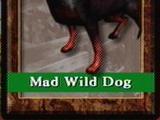 Mad Wild Dog