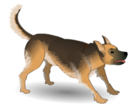 Dog attack idle