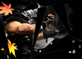 DOAD Artwork Ryu