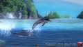 Zack island - Dolphins - screen by AdamCray and AgnessAngel