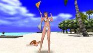 DOAP Hitomi Kasumi BeachFlags06