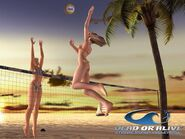 Xtreme-beach-volleyball-1