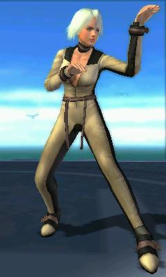 Christie/Dead or Alive Dimensions costumes