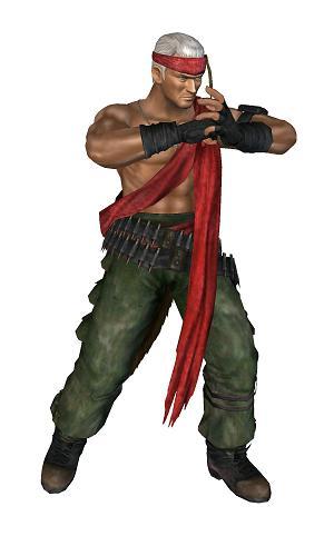 Leon/Dead or Alive Dimensions costumes