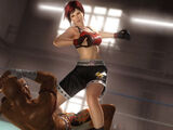 Mila/Dead or Alive 5 command list