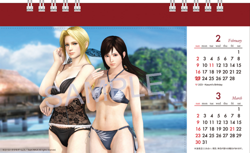 Dead or Alive 5 postcard school calendar 2013
