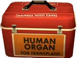 Organ Cooler (Case West)