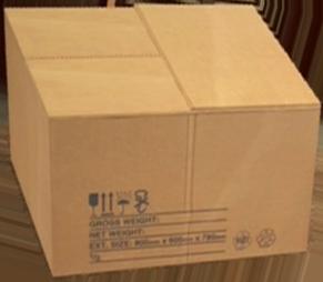 Cardboard Box (Dead Rising 2)