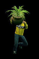 Dead rising round potted plant (5)