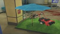 Dead rising umbrella