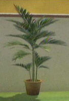 Dead Rising another plant