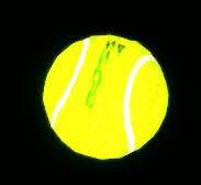 Dead rising Tennis Ball New