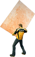 Dead rising plywood holding