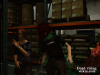 Dead rising paint hitting barricade pair with paint outtake (4)