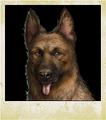 Character Dog Lightning.png