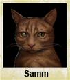 Character Cat Samm thumb.png