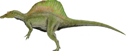 Accurate Spinosaurus.png